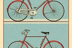 Special Bicycles